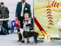 Конкурс Ребенок и Собака, 1 место - Алексей, 3 года