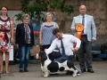 Лучшая Собака выставки, 2 место, судья - Mile Aleksoski